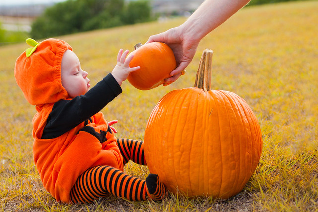 Baby Pumpkin-006