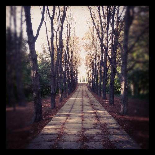 park by Valentyn Chub