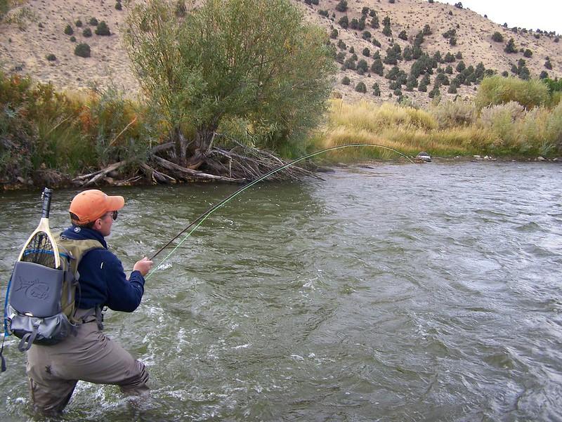 Mammoth fly fishing east walker river for Walker river fishing