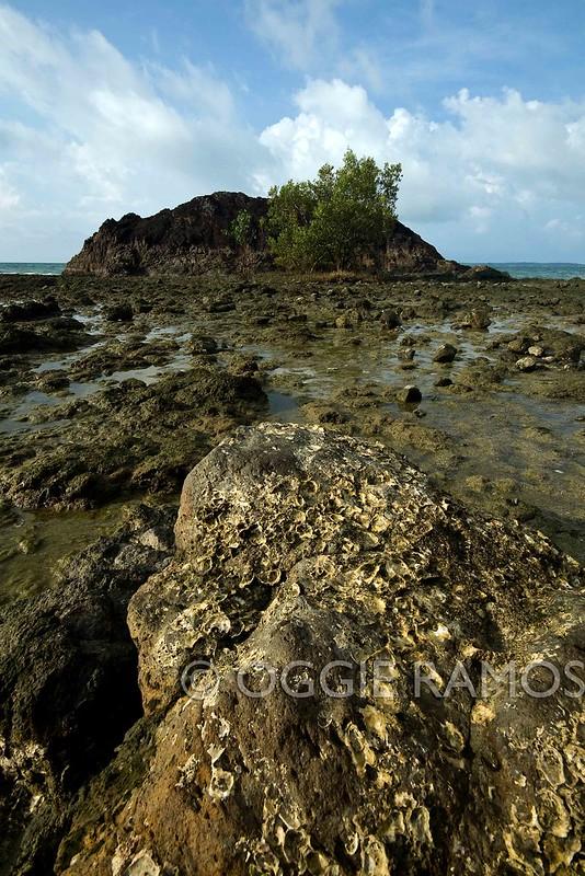 Guimaras Nagarao Southern Coast Curiosity
