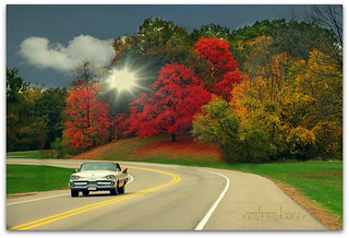Autumn Cruise | by Malena †