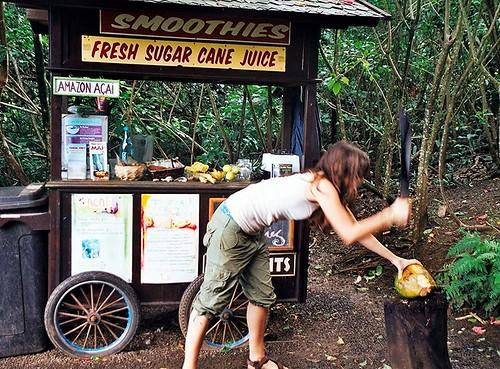 hawaii maui machete smoothie roadtohana