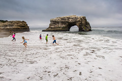 Natural Bridges State Beach, July 2016 #2