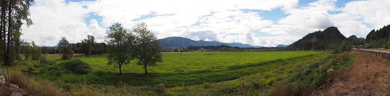 Randle Fields