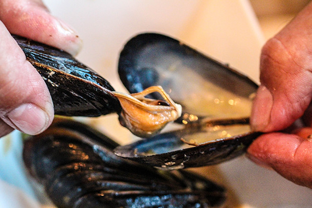 How to Eat a Mussel, Brasserie Belge, Sarasota, FL