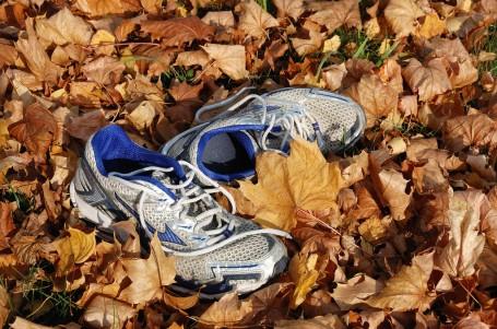 Podzim pomalu přichází. Buďte na něj připraveni
