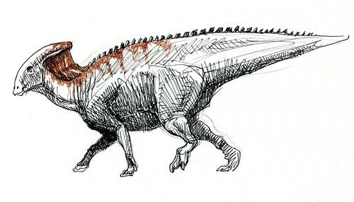parasaurolophus sketch