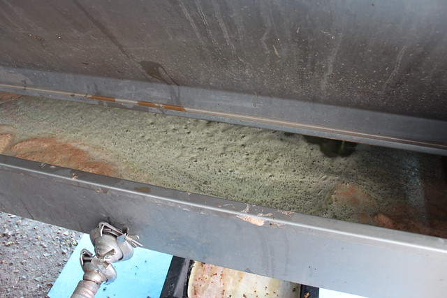 Extracting wine juice