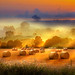 early in the morning 6 (Explore, frontpage) by Peter Roder