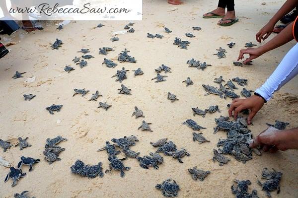 malaysia tourism hunt - redang island marine park-018