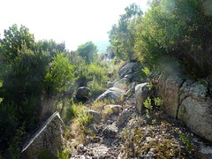 Chemin de la Montagne : le sentier en oblique dans la montée au plateau 487m
