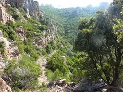 Entre Livisani et le col de la pointe 571 : le chemin avant le col