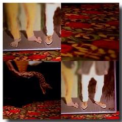 Monkey toes and a Donna Service snake #renzi #renzieducationandartcenter#bunko #fundraiser #shreveport #louisiana #downtown