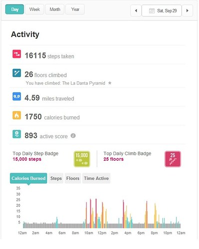 Fitbit activity