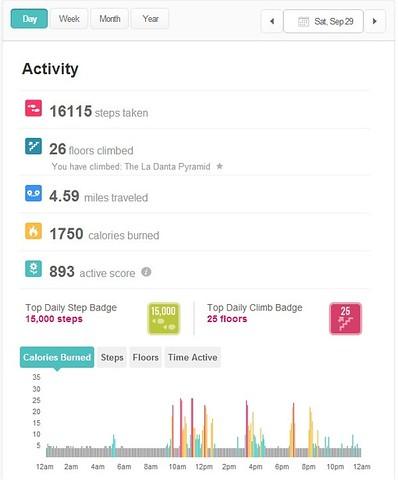 Fitbit activity