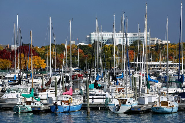 McKinley Marina fall colors