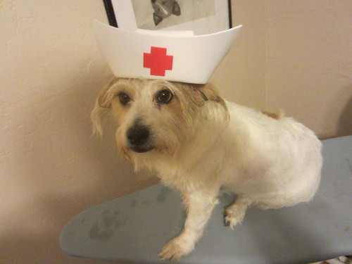 Nurse Dusty