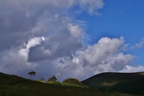 sky tree clouds rocks s