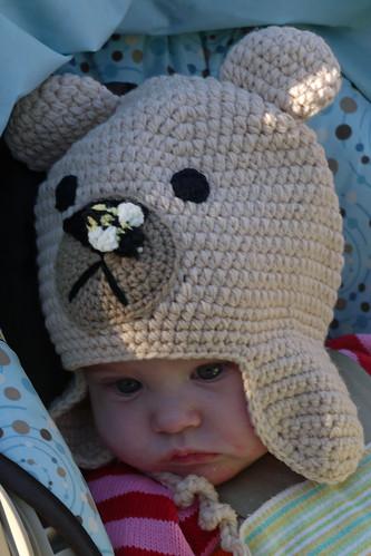 Animal Hat!