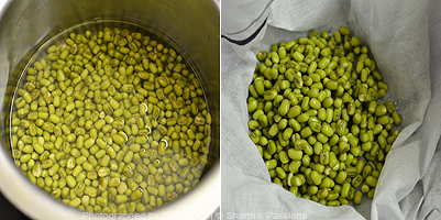Green Moong Bean Sprouts