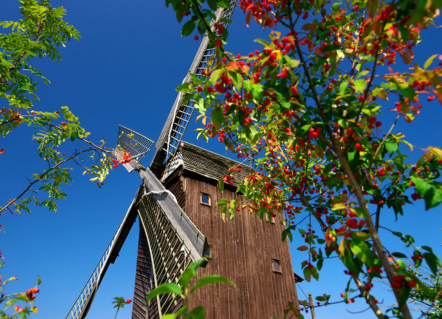 Windmill from a small kind perspective