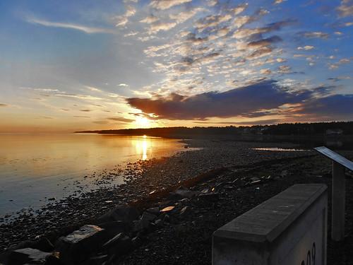 sunrise ngc bayroberts greateryellowlegs newfoundlandandlabrador spaniardsbay arniespond shearstownestuarywetlands