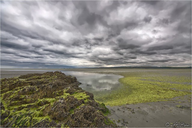 Bretagne low tide 2012-08-14 131001