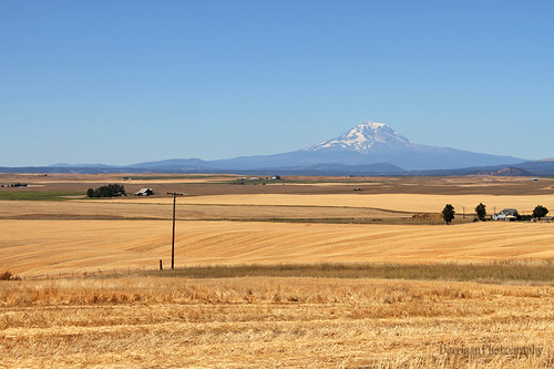 nature outdoors washington scenic goldendale mtadams