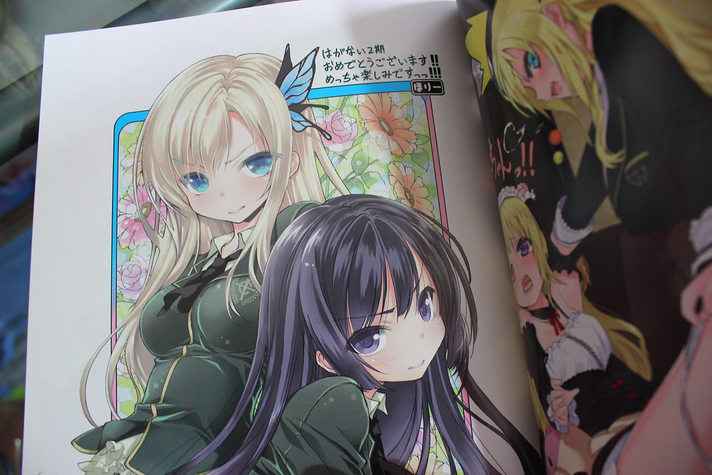 Haganai Cheer illustration Book