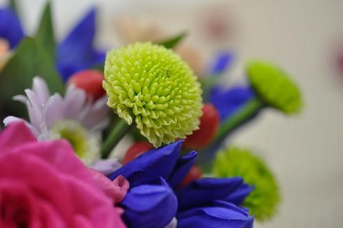 日比谷花壇 敬老の日