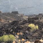 Necrópolis de Maipez de Arriba