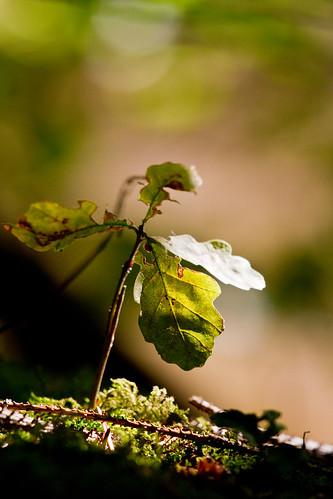 Genieten van de zon ! by eosfoto