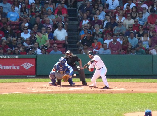 Pedroia at bat