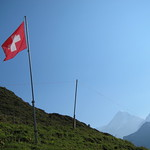 swiss alps 2012 691
