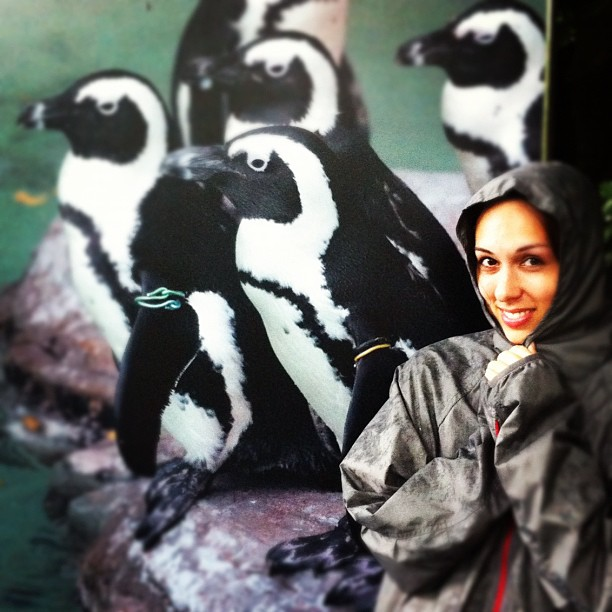 Allison with the penguins