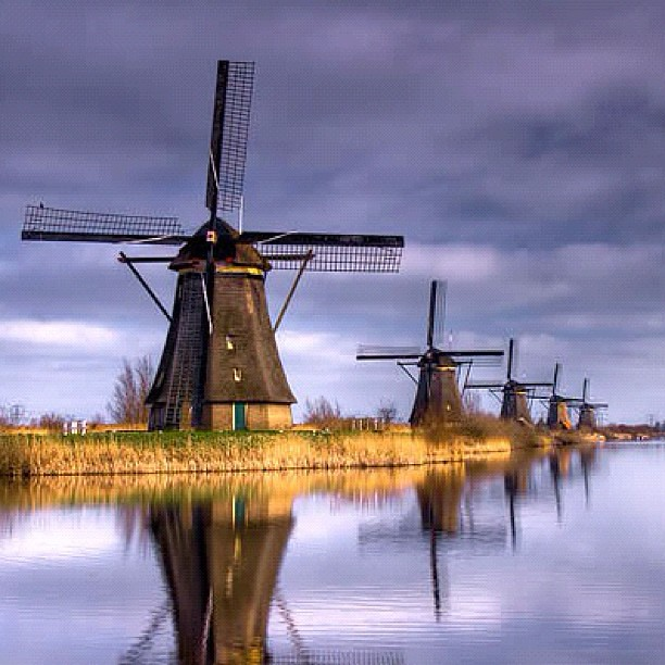 Windmills in the Netherlands #windmill #holland #netherland #nice # ...