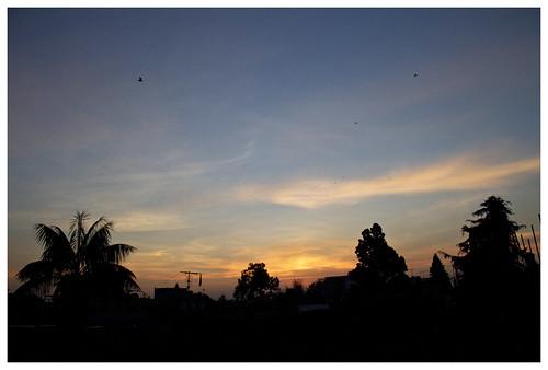 city méxico sunrise df amanecer approved
