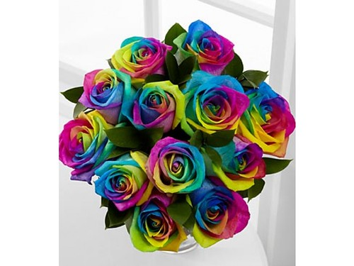 fiesta roses 12nv_rainbow