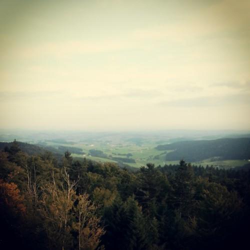 #ameisberg #österreich