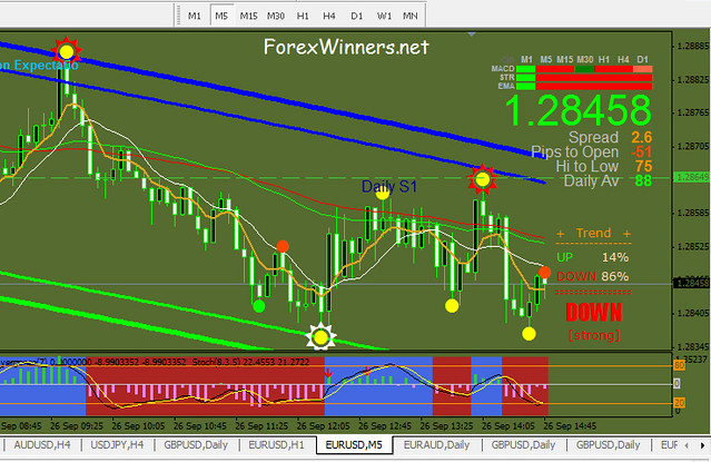 Forex winners net