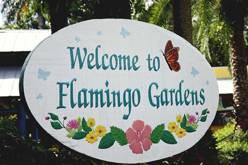 Flamingo Gardens 1