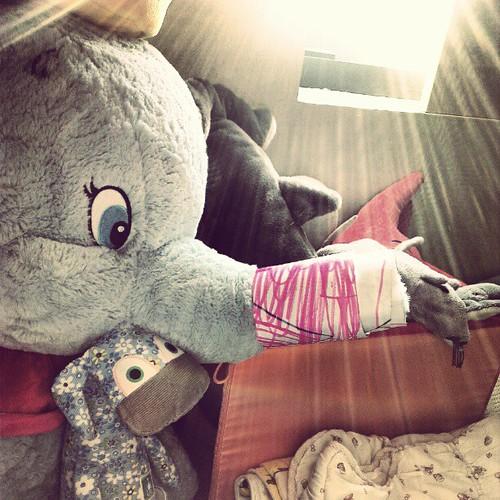 Dumbo受傷了嗎?