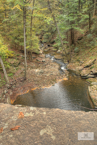 nature water forest woods tn hiking tennessee hike hdr rhea 2012 5xp pineyfalls