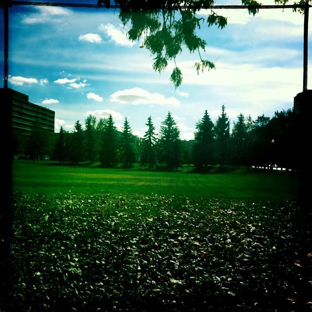 Central Park (in Regina)