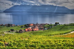 Rivaz, Switzerland