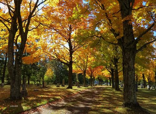 Autumn In Hillcrest Cemetery (3)
