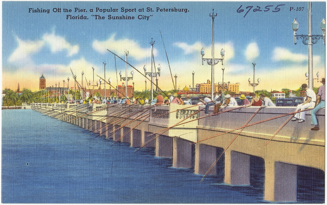 Fishing off the pier a popular sport at st petersburg for Fishing st petersburg fl