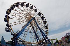 Ozark Empire Fair 2016