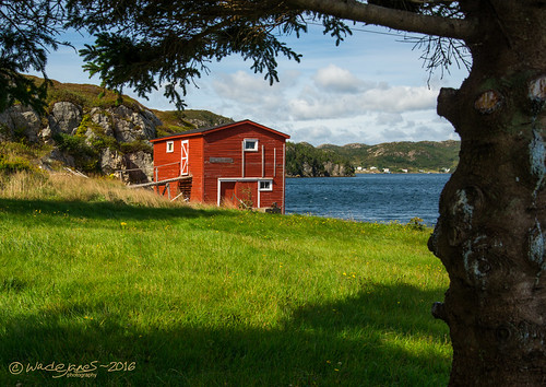 shed red ocean beach harbour field green blue bay tree fir branch branches cloud cloudy clouds cliff rock hill town