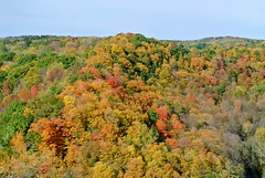 Dundas Peak in Fall